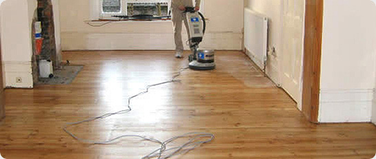 floor orbital equipment product sander
