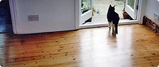 Frequently Asked Questions Wood Floor Sanders Uk Floor Sander